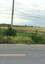 ที่ดินติดถนนคลองหลวง 197ไร่ 3งาน 62วา ติดถนนคลองสี่ ปทุมธานี-202009171915321600344932947.jpg