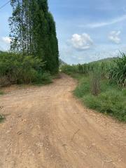 ขายที่ติดถนน อ.ท่าม่วง จ.กาญจนบุรี -202011091155031604897703957.jpg