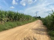 ขายที่ติดถนน อ.ท่าม่วง จ.กาญจนบุรี -202011091155171604897717500.jpg