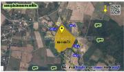 >>ขายที่ดินพร้อมสวนปาล์ม วิวภูเขา 270 องศา อ.แก่งคอย จ.สระบุรี 69-1-99 ไร่